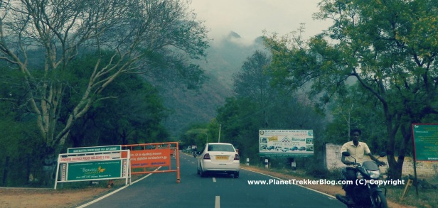 From Dindigul to Kodaikanal - 8