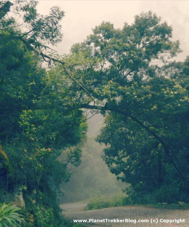Drive to Manavanur - 1