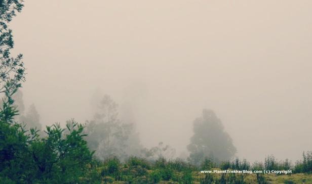 Drive to Manavanur - 3