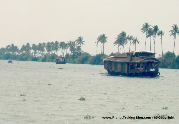 Houseboats wading through the backwaters