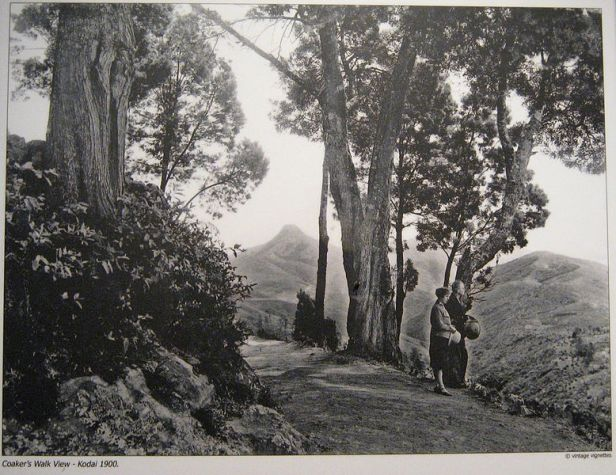 Kodai_Coakers_Walk_1900