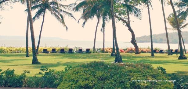 Grand Hyatt Goa - 21