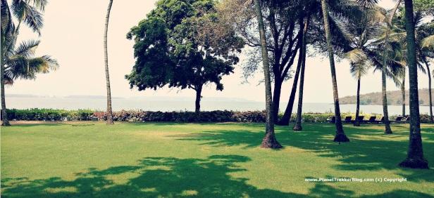 Grand Hyatt Goa - 6