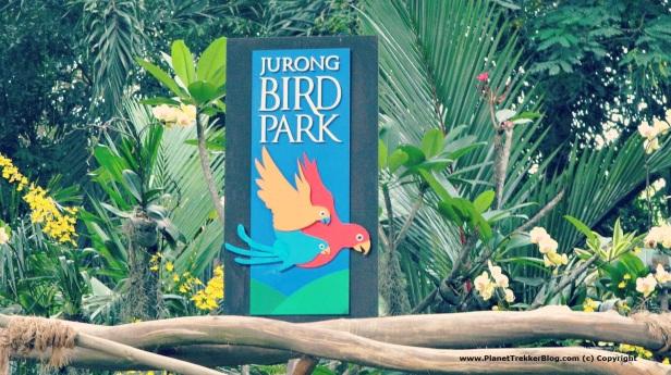 Jurong Bird Park 1