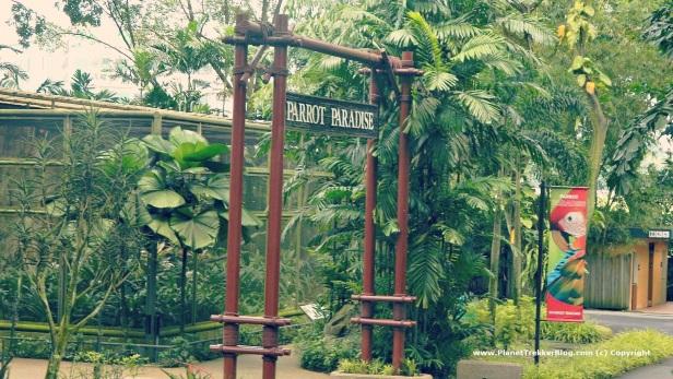 Jurong Bird Park 14
