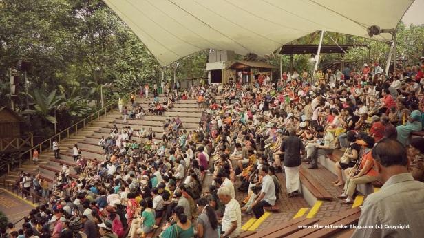 Jurong Bird Park 21