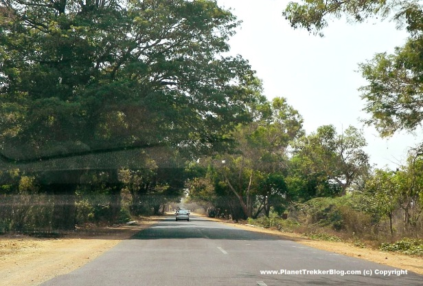 bangalore-to-ooty-1