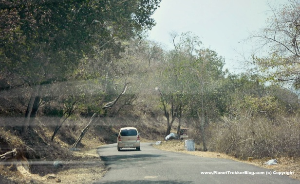 bangalore-to-ooty-22