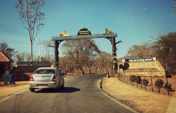 Bandipur National forward