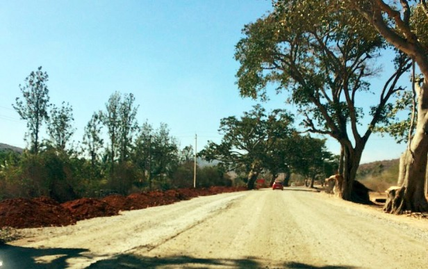 Road heading to Bandipur